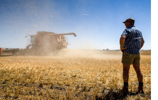 Wheat farmer Leon Hogan on his property, where his harvest is down 80 percent from last year